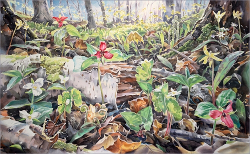 """What Grows Here"", 29 x46 inches , watercolour"