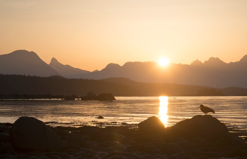 Sunrise from Cortes Island